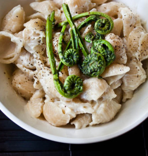 White Pasta with Fiddleheads