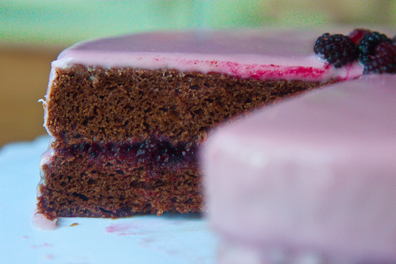 raspberry-chocolate-anniversary-cake-3