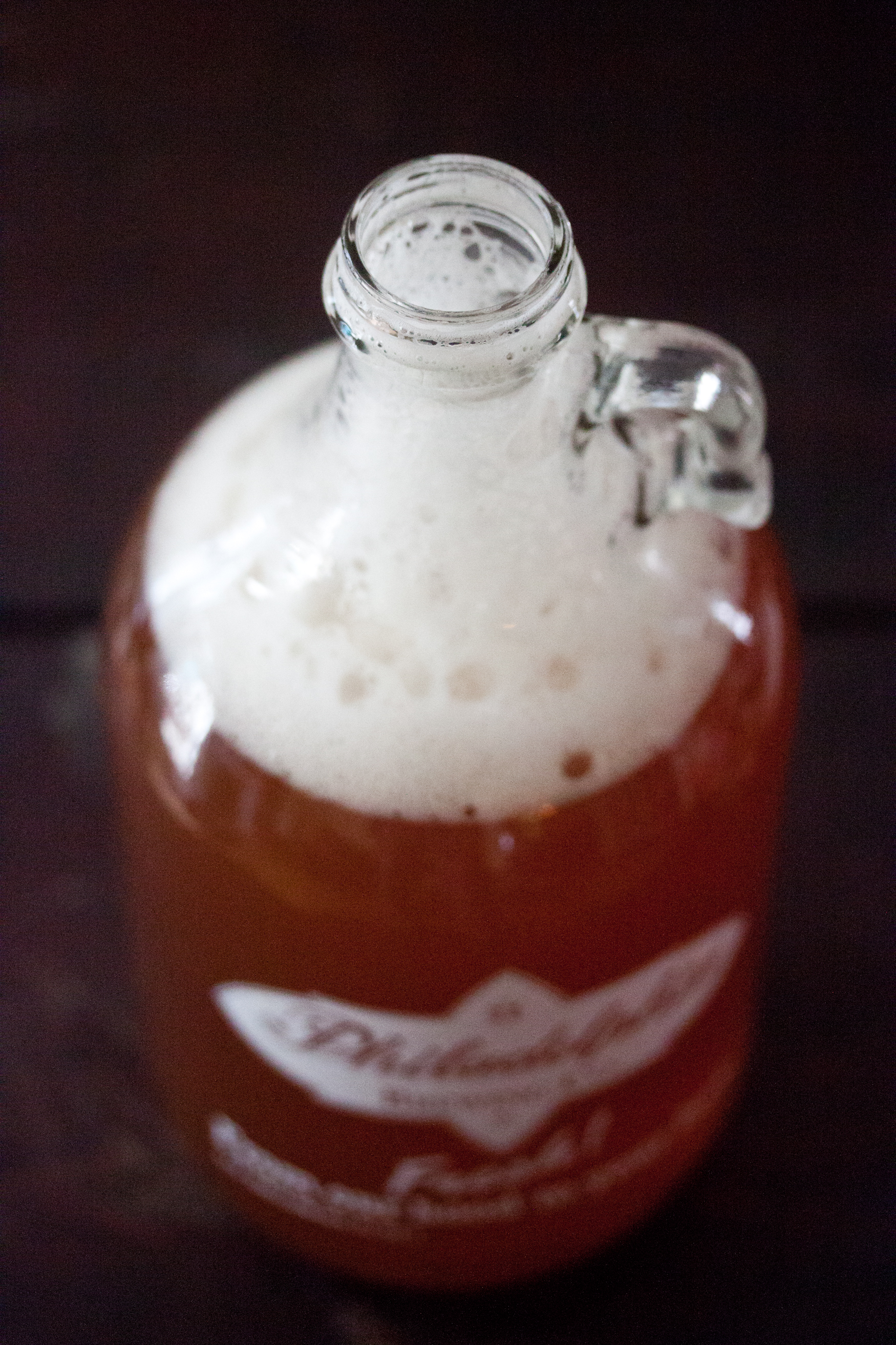 kombucha home brew 7